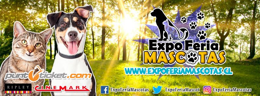 expo mascotas01